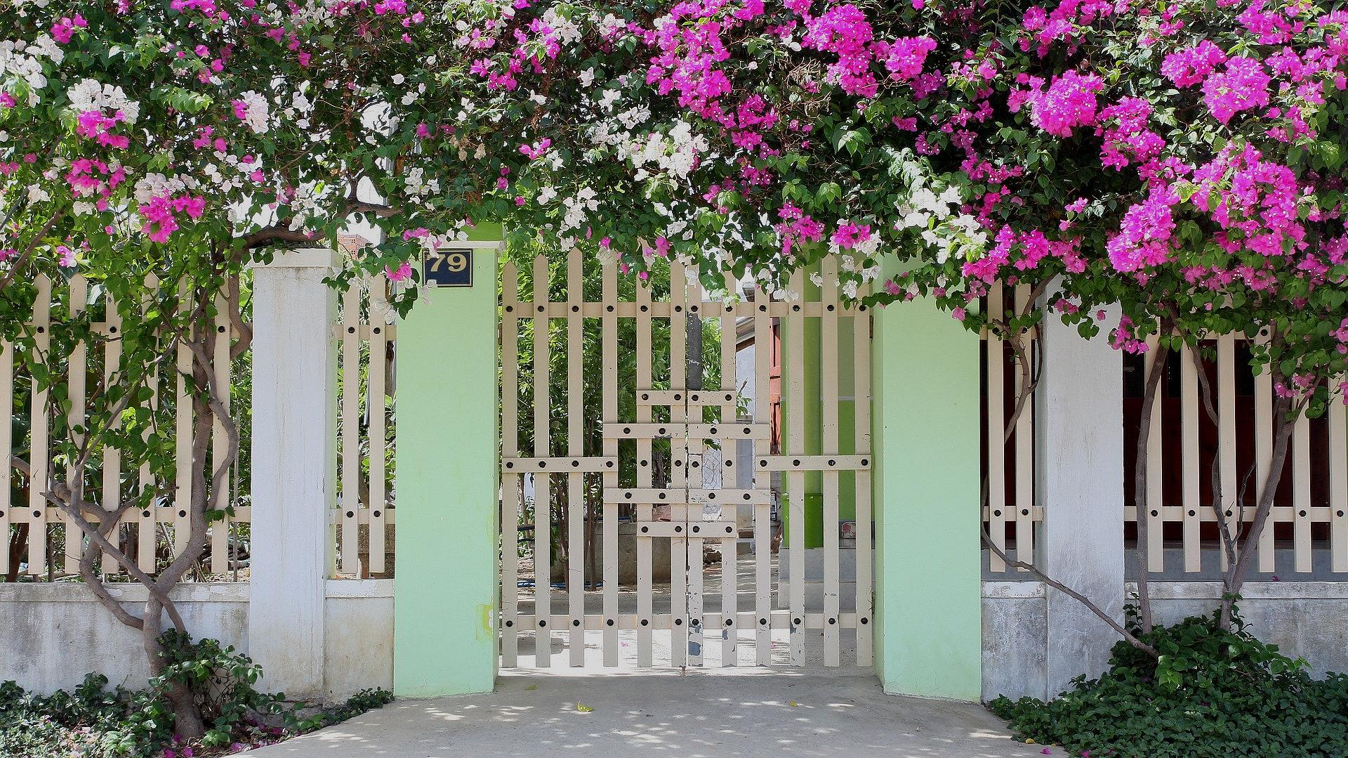 Основные типы заборов и оград